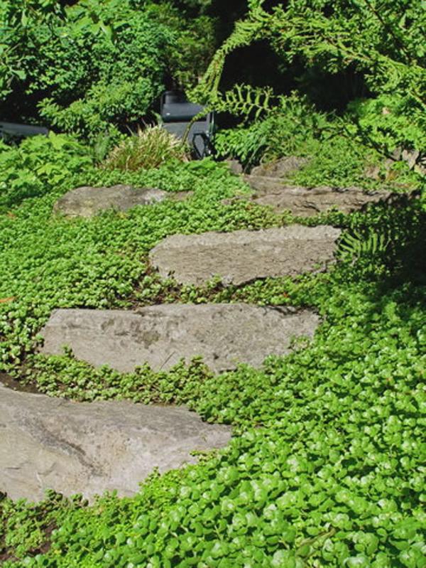 Very Small Garden Design