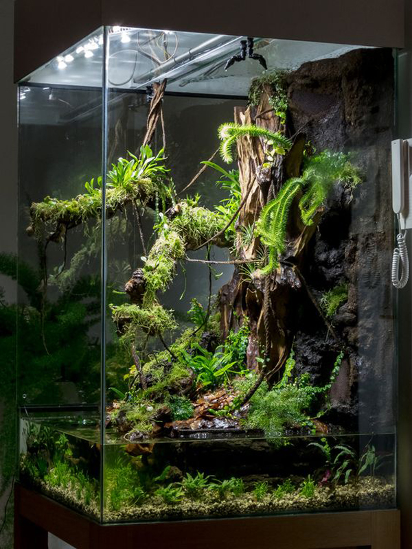 Let your kids become part of your great room's art collection by engaging in family crafts. paludarium-display-tank-with-natural-concept – HomeMydesign