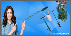 Top 10 Best Bulb Planters in 2019 – Complete Reviews