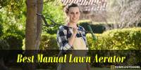 Top 10 Best Manual Lawn Aerator 2019 – Attractive Reviews