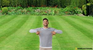 How to Make Your Lawn Flat – Start with Great Idea in 2020