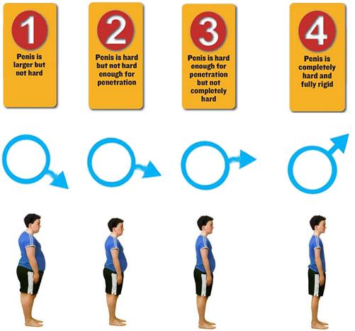 erection-hardness-score-chart treatment clinic in chennai