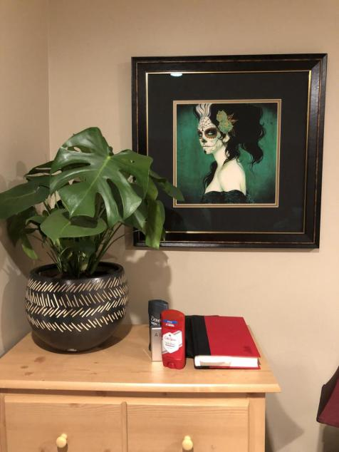 My Sylvia Ji print really catches peoples eye! I think my Monstera really compliments it.
