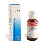 Reckeweg R66 Drops for Irregular Heart Beat, Cardiac Arrhythmia