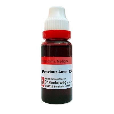 Dr. Reckeweg Fraxinus Americana Q, Homeopathic Mother Tincture, 20ml