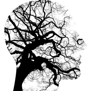 Brain & Nervous