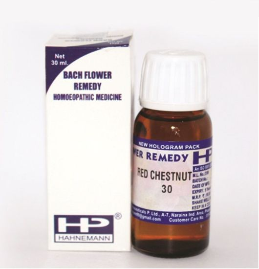 Buy Bach Flower Remedy Red Chestnut for Worried, over-concern, fear.