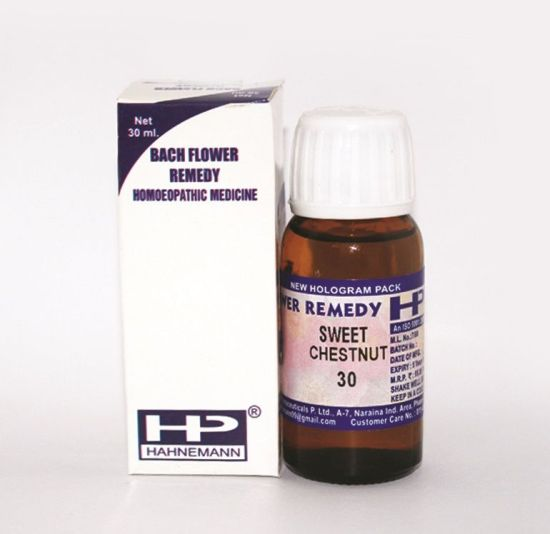 Buy Bach Flower Remedy Sweet Chestnut for Extreme mental anguish, hopeless despair, intense sorrow.