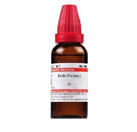Schwabe Bellis Perennis Homeopathy Mother Tincture Q