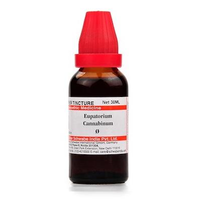 Schwabe Eupatorium Cannabinum Homeopathy Mother Tincture Q