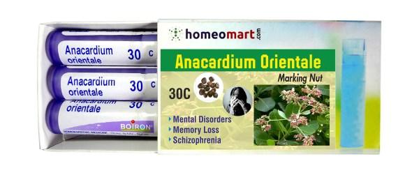 Homeopathy medicine Anacardium Orientale for Mental Disorders, Memory loss, Schizophrenia