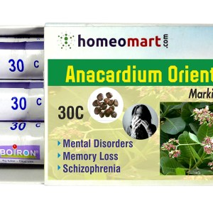 Homeopathy medicine Anacardium Orientale for Mental Disorders, Memory loss, Schizophrenia