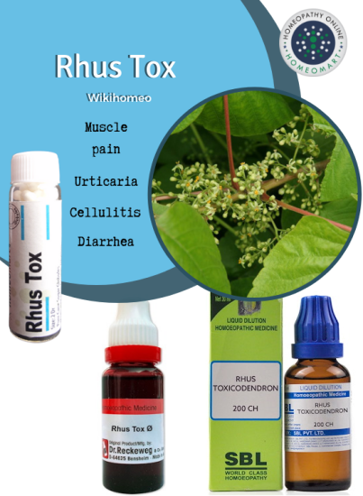 Rhus Toxicodendron medicines in homeopathy