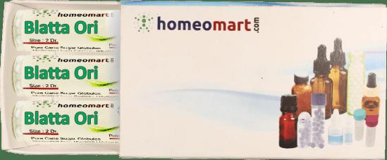 Blatta Orientalis homeopathy pellets