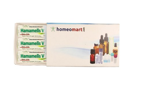 Hamamelis virginica homeopathy pills