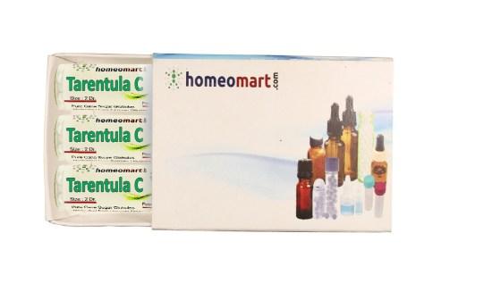 Tarentula Cubnesis homeopathy pills