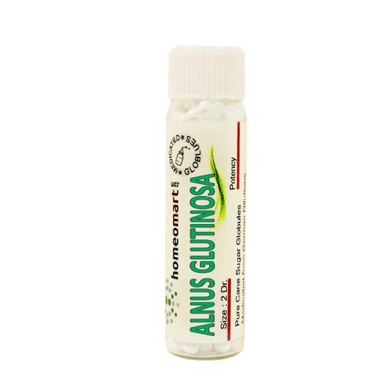 Alnus Glutinosa Homeopathy 2 Dram Pellets 6C, 30C, 200C, 1M, 10M