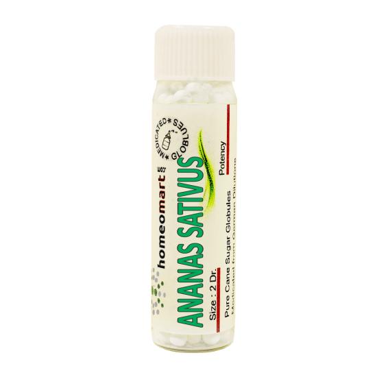 Ananas Sativus Homeopathy 2 Dram Pellets 6C, 30C, 200C, 1M, 10M