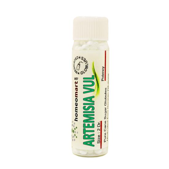 Artemisia Vulgaris Homeopathy 2 Dram Pellets 6C, 30C, 200C, 1M, 10M