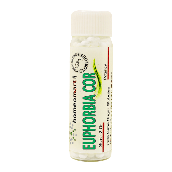 Euphorbia Corollata Homeopathy 2 Dram Pellets 6C, 30C, 200C, 1M, 10M