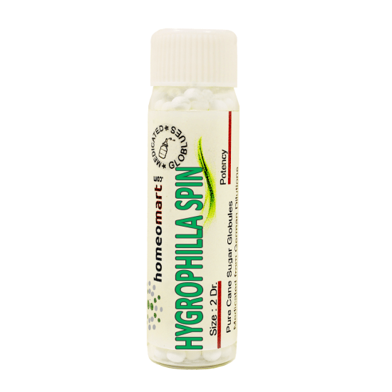 Hygrophilla Spinosa Homeopathy 2 Dram Pellets 6C, 30C, 200C, 1M, 10M