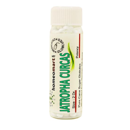 Jatropha Curcas Homeopathy 2 Dram Pellets 6C, 30C, 200C, 1M, 10M