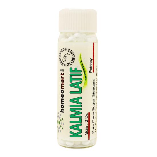 Kalmia Latifolia Homeopathy 2 Dram Pellets 6C, 30C, 200C, 1M, 10M