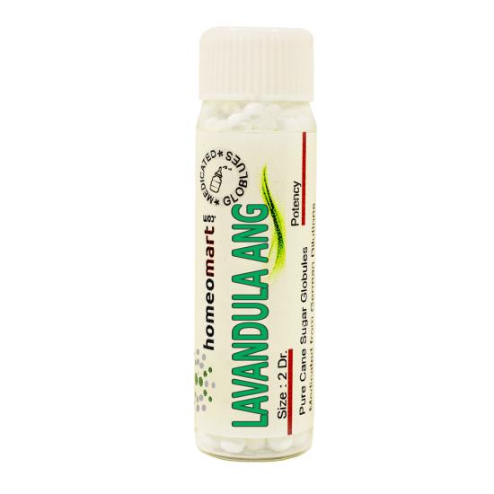 Lavandula Angustifolia Homeopathy 2 Dram Pellets 6C, 30C, 200C, 1M, 10M