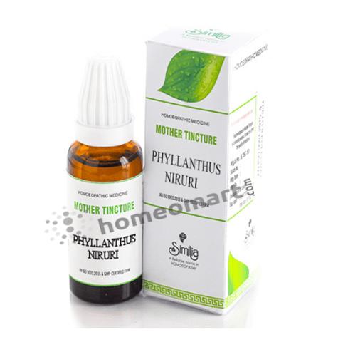 Phyllanthus Niruri Homeopathy mother tincture Q