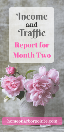 Income and Traffic Report Month Two