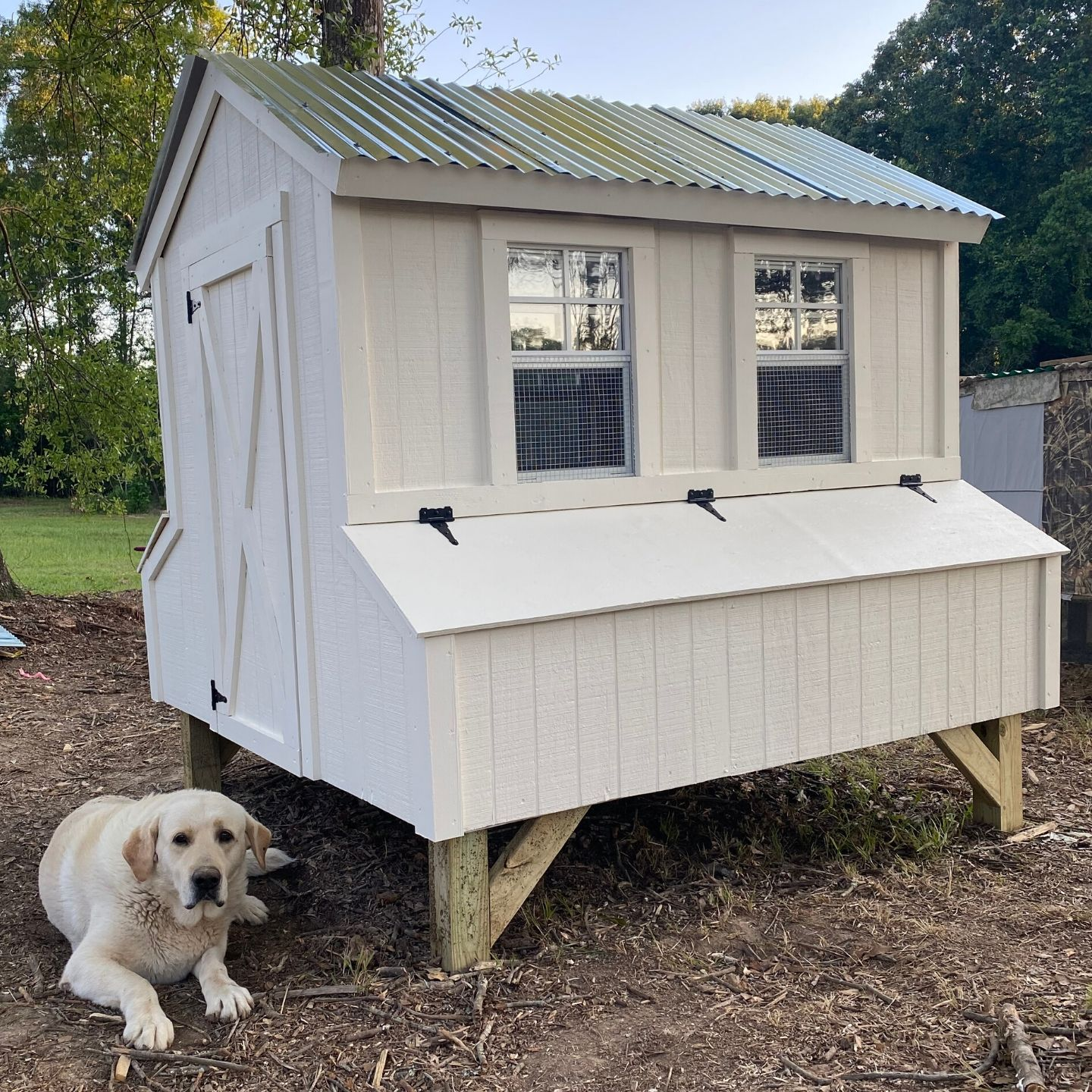 DIY Farmhouse Chicken Coop with metal roof