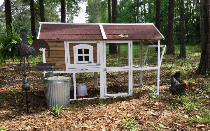 new chicken coop for 3 to 5 chickens, tractor supply chicken coop, easy chicken coop, simple, cheap chicken coop