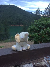 Tantor with the Lake