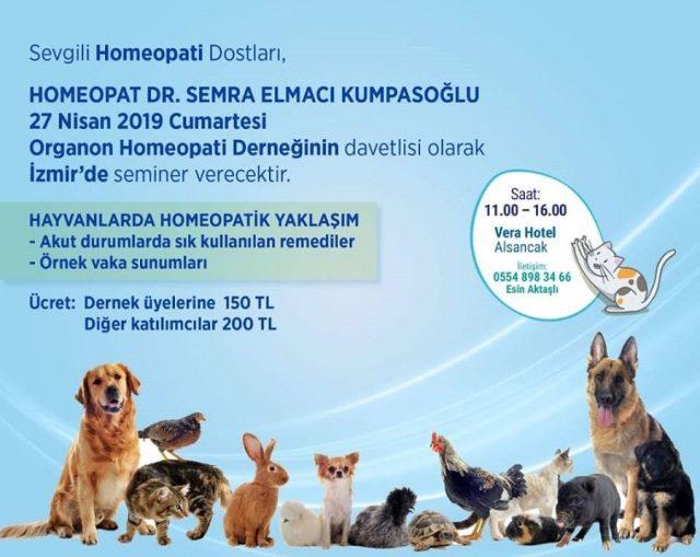 hayvanlarda homeopati