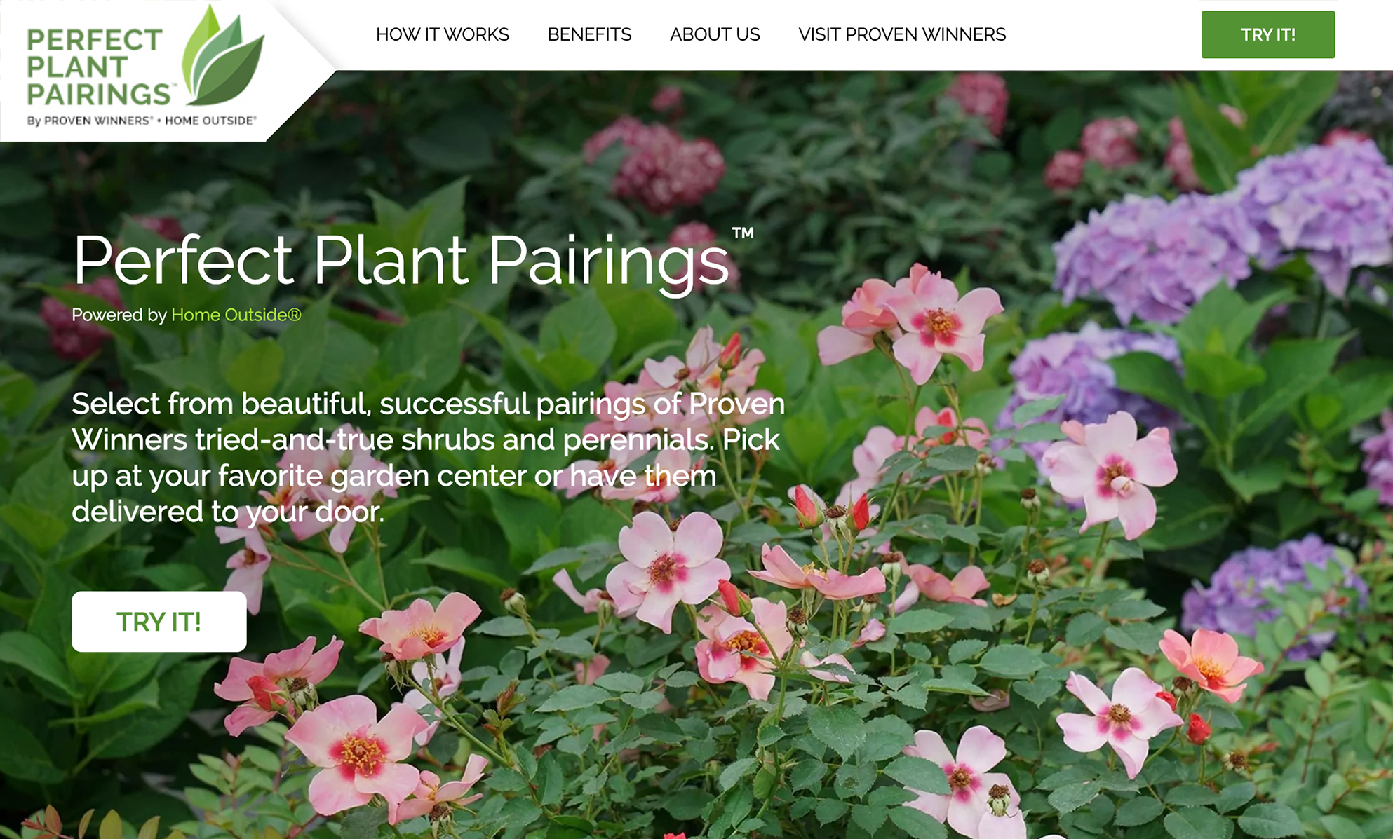Proven Winners Perfect-plant-pairings-powered-by-Home-Outside