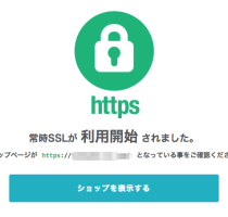 カラミーショップが独自ドメインのショップサイトもSSL対応!今なら最大3カ月無料キャンペーンあり!