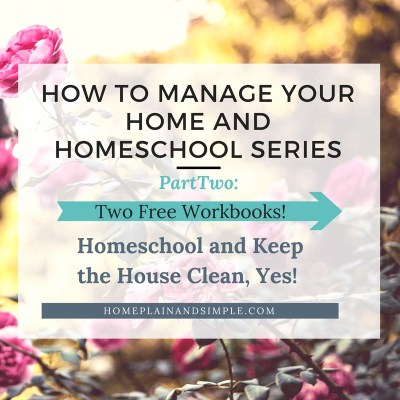 Homeschooling and Home Management: How to Homeschool and Keep the House Clean and Still Have Fun