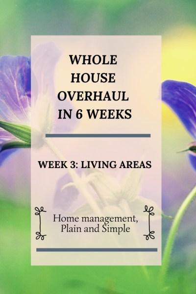 Whole House Overhaul in 6 weeks: Week 3