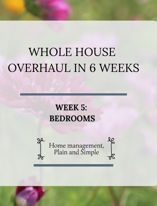 Whole House Overhaul in 6 Weeks: Week 5