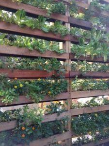 DIY patio privacy screen