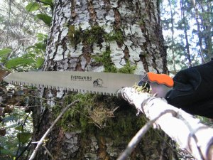 FAQs for the EverSaw 8..0 folding saw