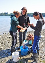 PORT HADLOCK, Wash. - Eighth grade science students from Blue Heron Middle School measure a fish they caught and record the data as part of a hands-on marine science lesson. The students participated in an educational field trip to Naval Magazine Indian Island May 7-8 to learn how to conduct fisheries research work and help gather data that relates to the Kilisut Harbor restoration project. The hands-on project was led by personnel from U.S. Geological Survey's Marrowstone Marine Field Station, with support from personnel from National Oceanographic and Atmospheric Administration's National Marine Fisheries Service, U.S. Navy, Washington Department of Fish and Wildlife, and the North Olympic Salmon Coalition. (U.S. Navy photo by Liane Nakahara/Released)