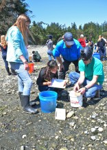 PORT HADLOCK, Wash. - Eighth grade science students from Blue Heron Middle School, Jake Gregg from the U.S. Geological Survey Marrowstone Marine Field Station, far right, and Lyle Britt from the National Marine Fisheries Service measure a fish they caught and record the data as part of a hands-on marine science lesson. The students participated in an educational field trip to Naval Magazine Indian Island May 7-8 to learn how to conduct fisheries research work and help gather data that relates to the Kilisut Harbor restoration project. The hands-on project was led by personnel from U.S. Geological Survey's Marrowstone Marine Field Station, with support from personnel from National Oceanographic and Atmospheric Administration's National Marine Fisheries Service, U.S. Navy, Washington Department of Fish and Wildlife, and the North Olympic Salmon Coalition. (U.S. Navy photo by Liane Nakahara/Released)