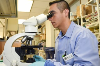 170202-N-NR998-035 BREMERTON, Wash. (Feb. 2, 2017) Hospital Corpsman 3rd Class Carlos RangelMejia looks through a microscope in the laboratory at Naval Hospital Bremerton, Feb. 2. RangelMejia is one of 42 Sailors selected Navy-wide for the Medical Enlisted Commissioning Program (MECP) where he will attend George Washington School of Nursing in Washington D.C., to earn a nursing degree followed by an appointment to ensign in the Nurse Corps. (U.S. Navy photo by Mass Communication Specialist 1st Class Gretchen M. Albrecht/Released)