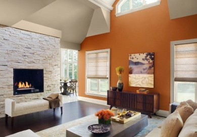 Living Room Ideas Paint Color Schemes Olympic