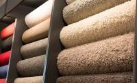 Best Type Of Carpet Nylon Or Polyester