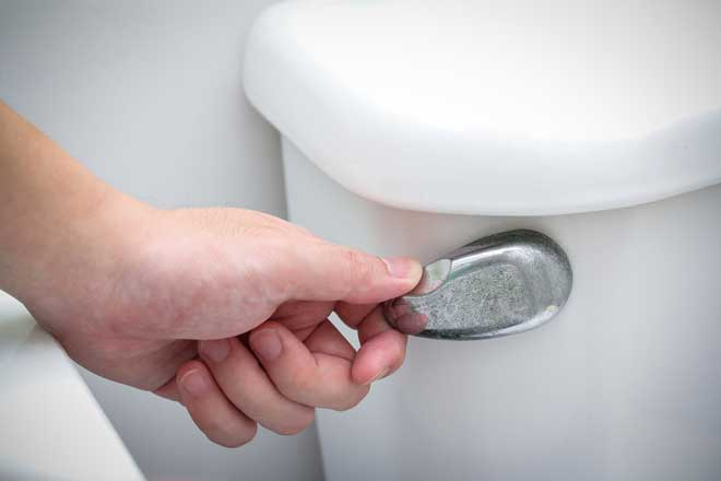 Toilet Handle Being Pushed to Flush Toilet