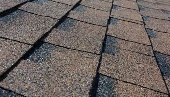 Can You Paint Roof Shingles?