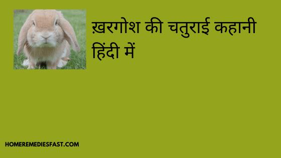 ख़रगोश-की-चतुराई-कहानी-हिंदी-में