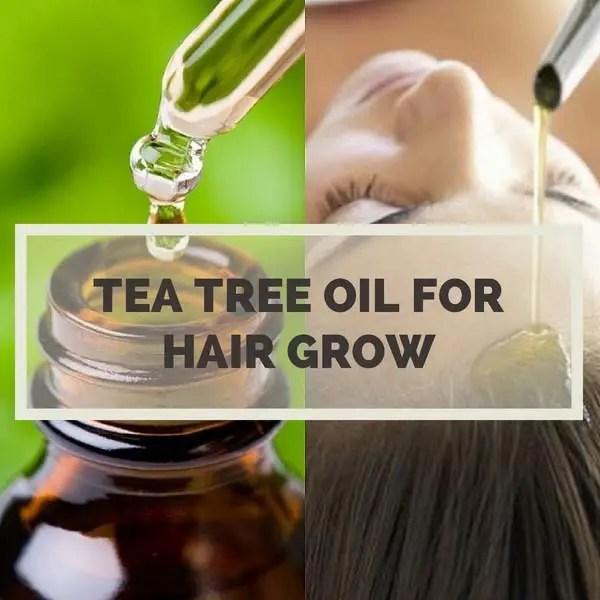 Tea Tree Oil For Hair Growth 11 Best Uses For Long Hair